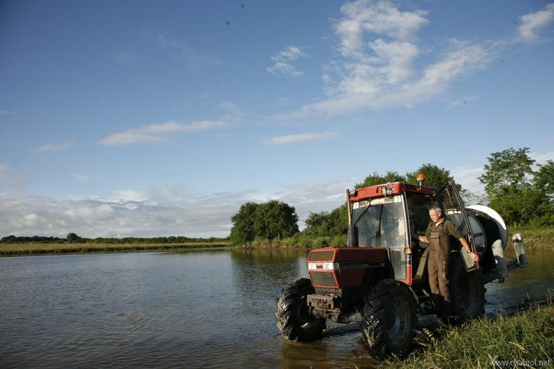 Tracteurs & Pêcheurs de carpes en Brenne