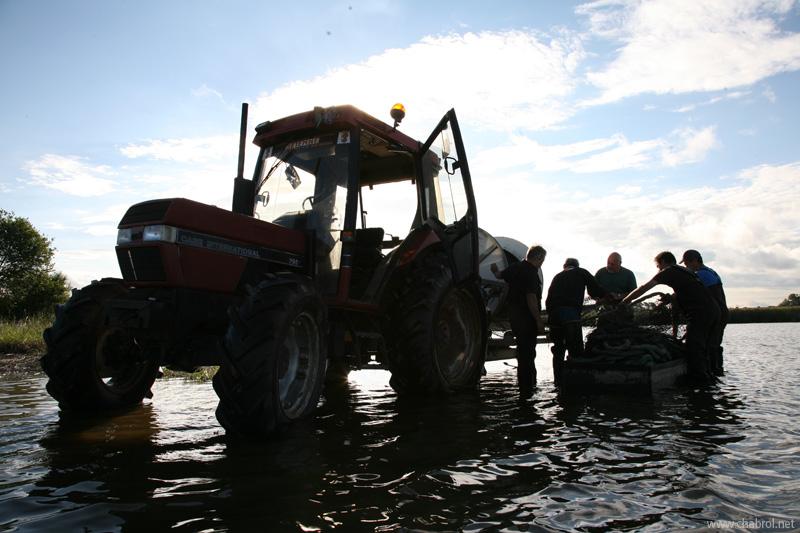 Tracteurs, filet & Pêcheurs de carpes en Brenne