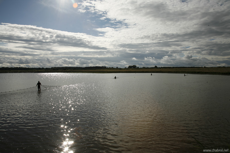 pêcheurs au milieu de l'étang en Brenne