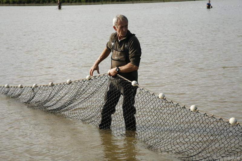 Pêcheurs de carpes en Brenne